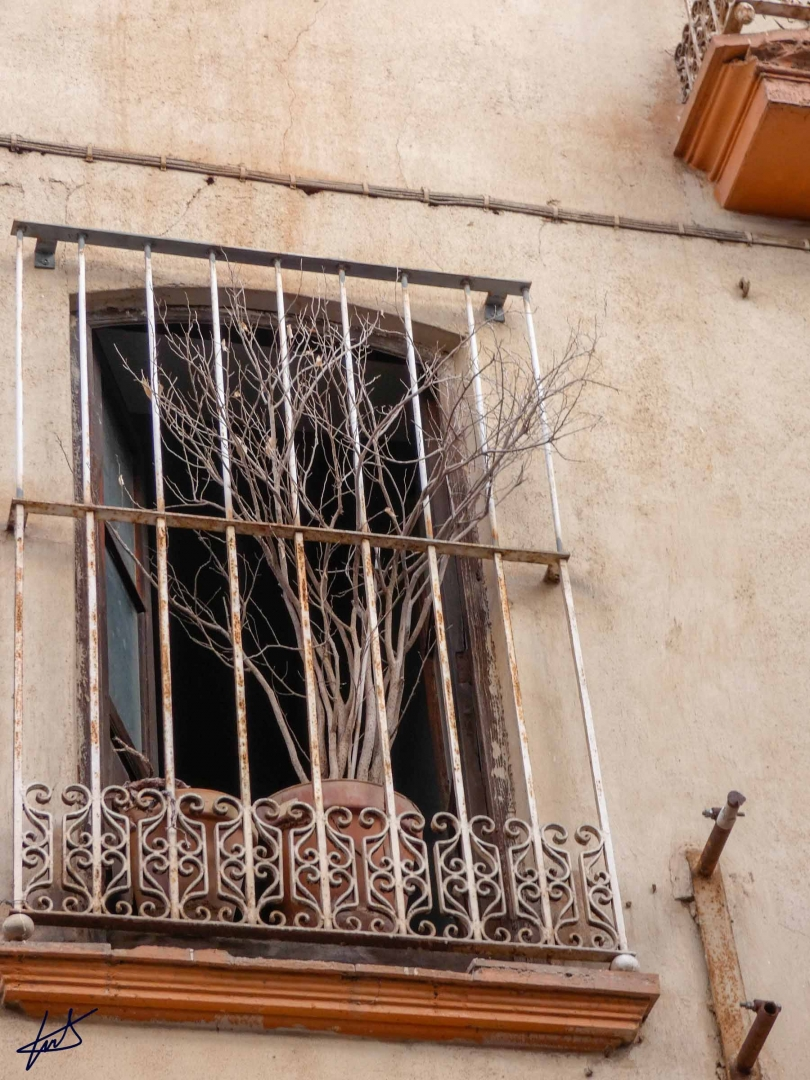 castellon_01-01-2019_038