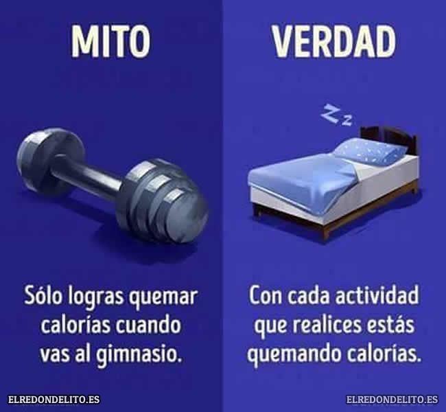 mitos_vs_realidad_elredondelito.es_004