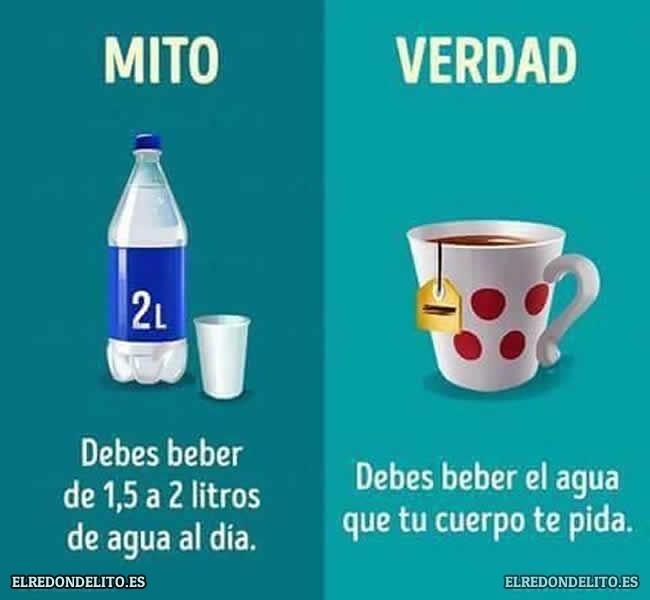 mitos_vs_realidad_elredondelito.es_007
