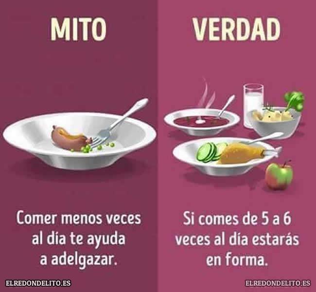 mitos_vs_realidad_elredondelito.es_010