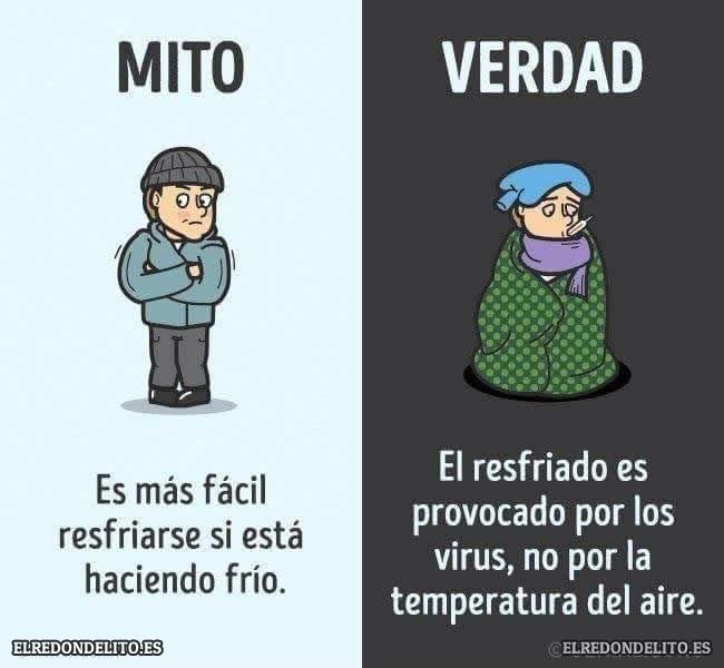 mitos_vs_realidad_elredondelito.es_013
