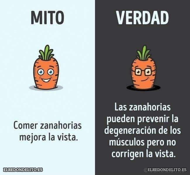 mitos_vs_realidad_elredondelito.es_014