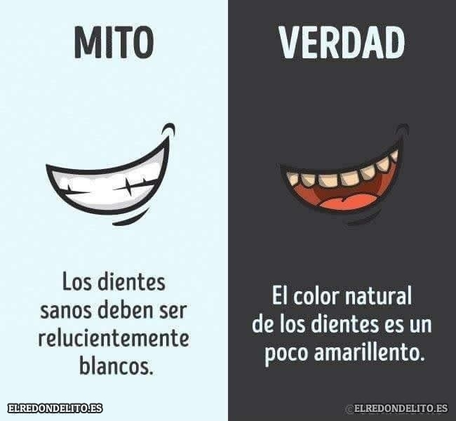 mitos_vs_realidad_elredondelito.es_016