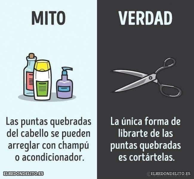mitos_vs_realidad_elredondelito.es_017