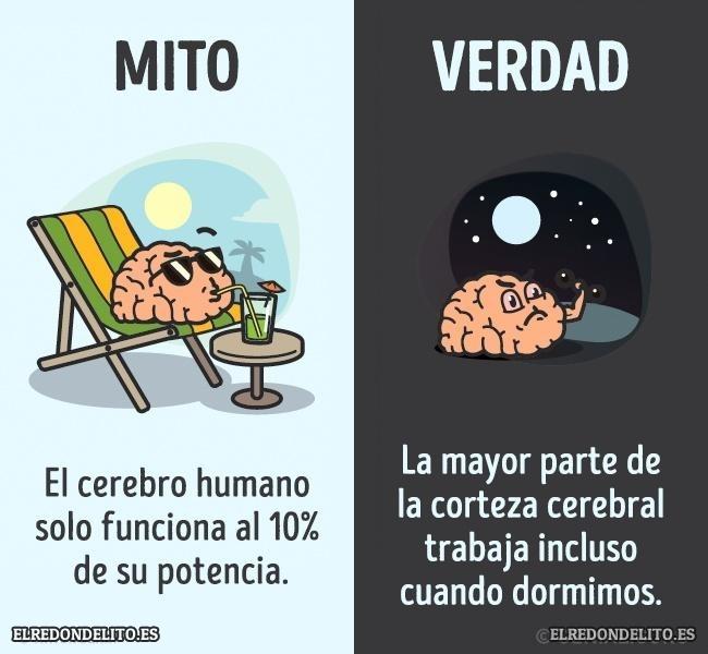 mitos_vs_realidad_elredondelito.es_018c
