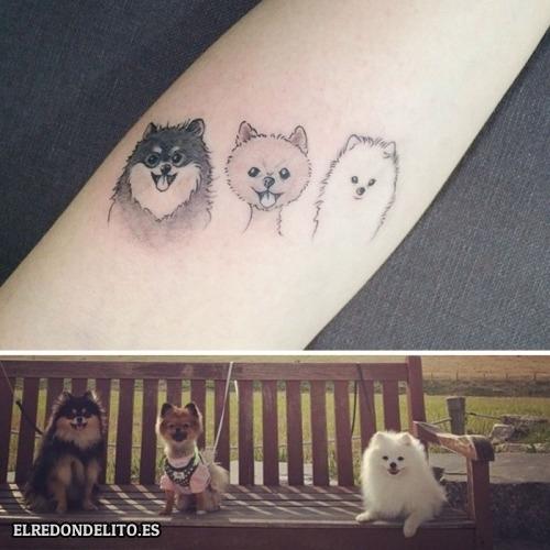 tatuajes_protagonistas_perros_022