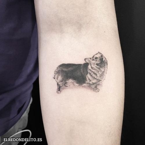 tatuajes_protagonistas_perros_046