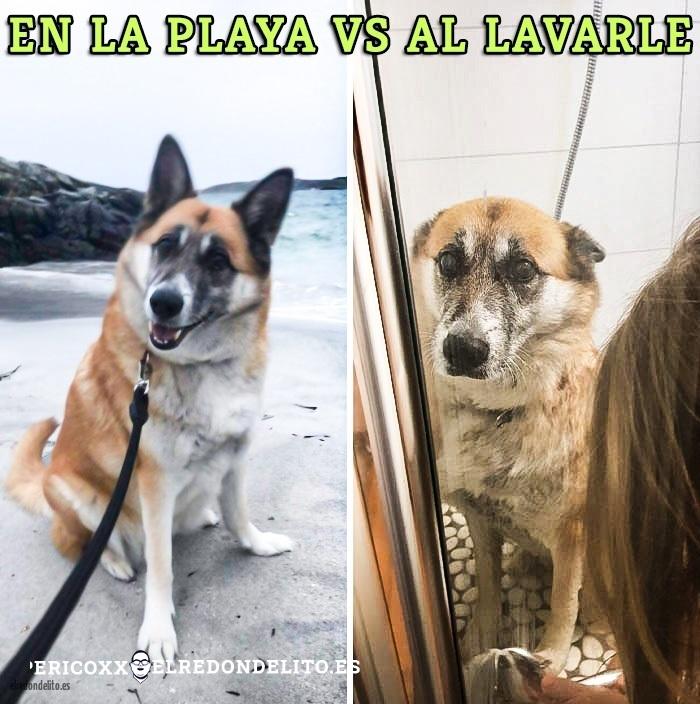 comparacion_antes_y_despues_el_redondelito.es_026