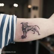 tatuajes_protagonistas_perros_010