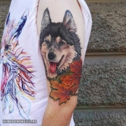 tatuajes_protagonistas_perros_053