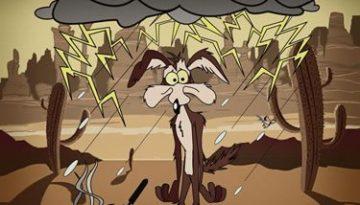 coyote_mala_suerte