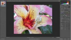 375x250_camera_raw