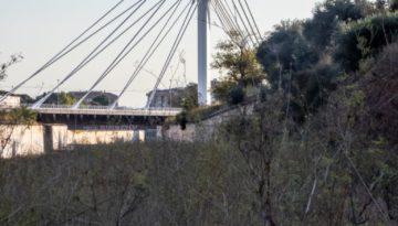 pericoxx_elredondelito.es_graffiti_riu_sec_2019-20