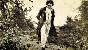 Beethoven paseando