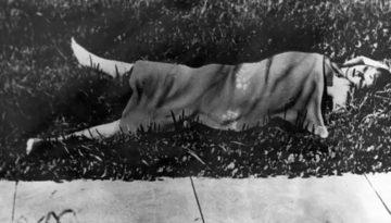El cuerpo de Elizabeth Short, cubierto en un campo en el parque Leimert de Los Ángeles. El 15 de enero de 1947.