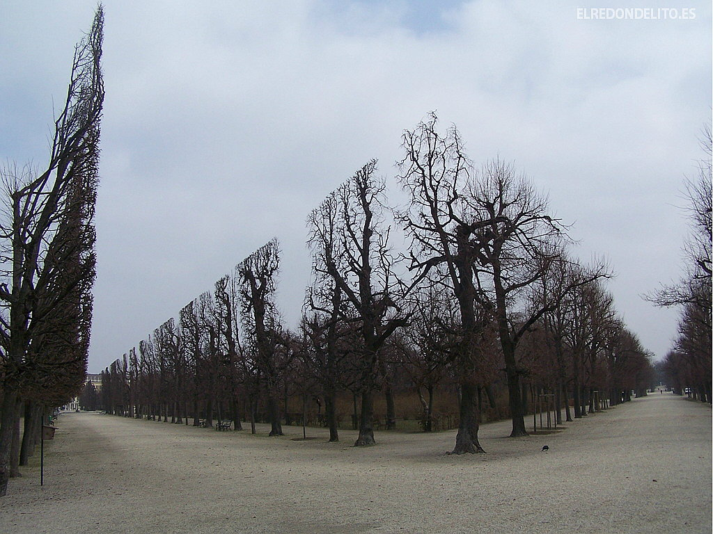 árboles geométricos